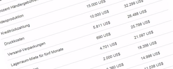 Crowdfunding Kalkulation