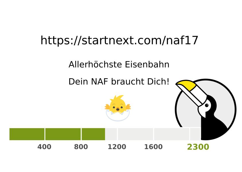 Crowdfunding Neustadt Art Festival steht bei 50%
